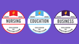 three, round 2020 colleges of distinction badges: business, education, nursing