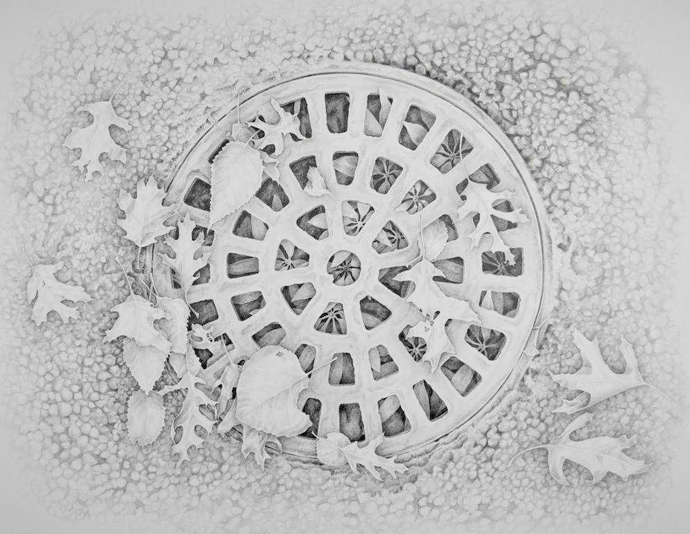Pencil drawing of decorative wheel and plants